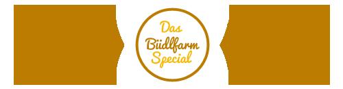 bfspecial_divider_500x130